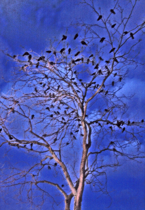other-crow-tree-enhanced