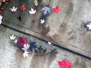 leaf-stains-2014-1
